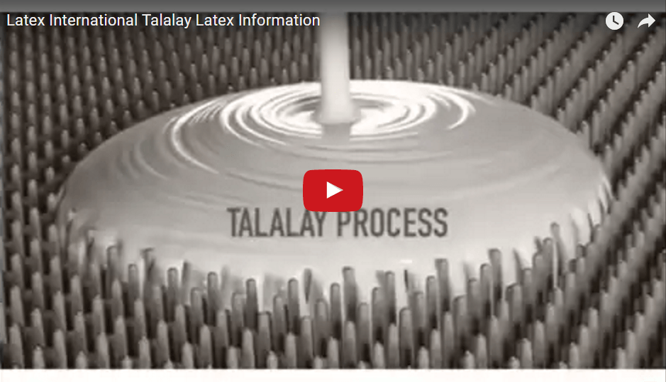Latex International: Talalay Latex Process